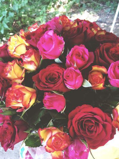 ❤️☺️🎁 букет розы радость💕