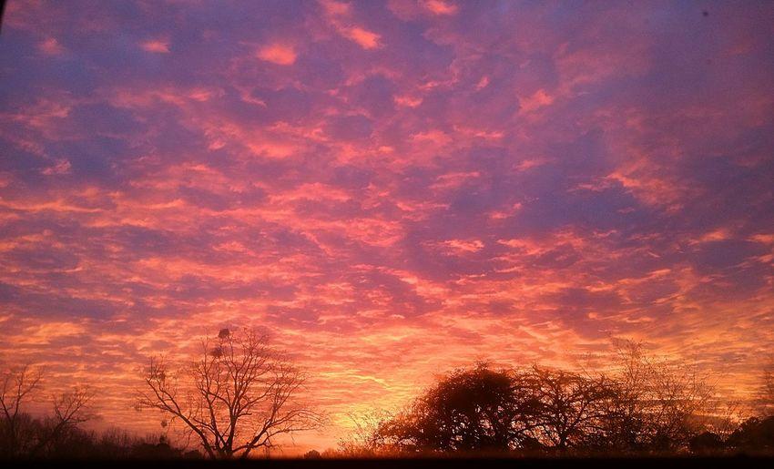 sunrise, from