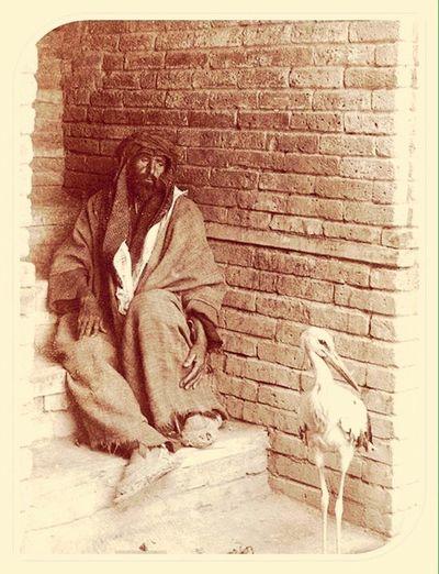 Baghdad1880 Blackandwhite Bird