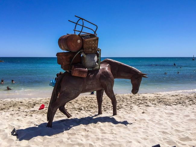Heavy Load: Horse Sculpture Sculptures By The Sea Arts Festivals Sculpture March 12,2016 Australia Tourist Attraction  Cottesloe Beach Western Australia ArtWork Beach Arts Culture And Entertainment Horse Horse Sculpture Balancing Carrying Heavy Load Travelling Learn & Shoot: Balancing Elements Indian Ocean Interactive  Metal Turquoise Water Sand Beach Photography Horse Representation