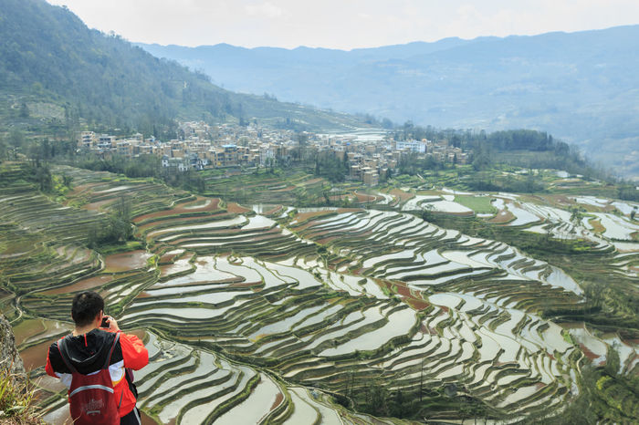 YuanYang, China - February 21, 2017: Chinese tourist taking pictures of the YuanYang rice terraces from the top of a cliff. YuanYang rice terraces in Yunnan, China, are one of the latest UNESCO World Heritage Sites Agriculture ASIA Bada Banaue Philippines Chinese Minority Dali Yunnan Duoyishu Ethnic Minority Hamanoura Tanada Hani Honghe Laohuzui, Laoyingzui Lijiang, Rice Terraces Sapa, Vietnam Shangrila, Shengcun Market Tegalalang Ubud UNESCO World Heritage Site Water Buffalo Yi Yuanyang Yunnan ,China