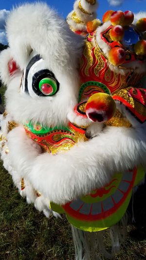 Moon Festival Celebration Close-up Traditional Festival Traditional Dancing Chinese Dragon