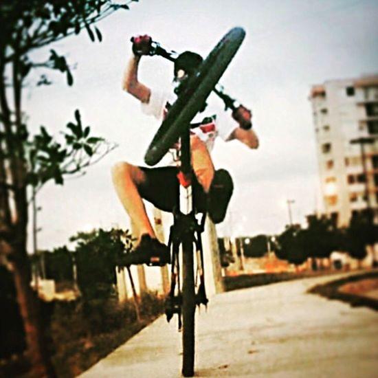 Wheelie Bike Montainbike Stunt MTB