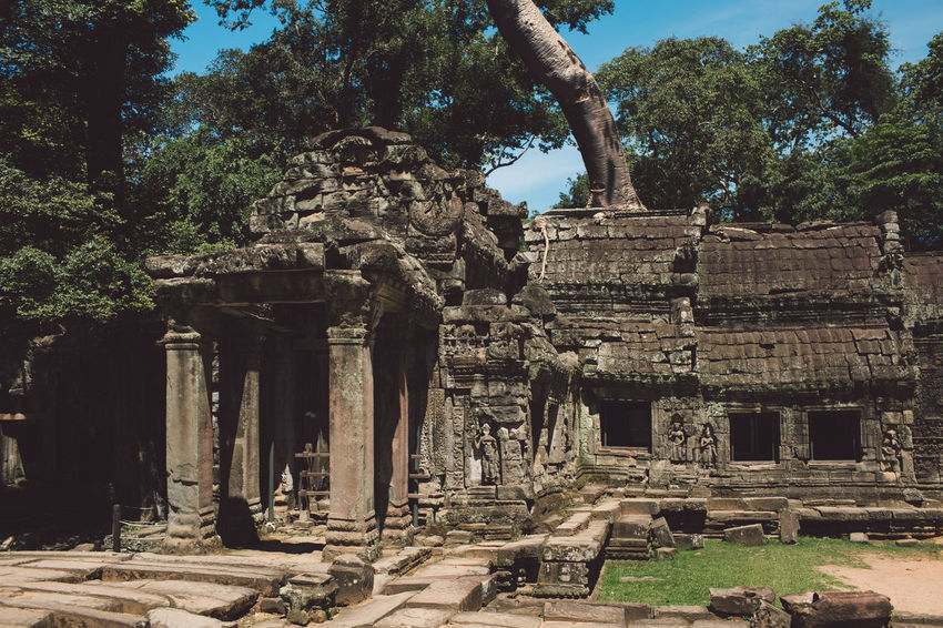 Siem Reap Cambodia Angkor Architecture Ancient History Built Structure Tree The Past Old Ruin Place Of Worship Plant Ancient Civilization Travel Destinations Travel Nature Old Archaeology Tourism Building Building Exterior Architectural Column Day No People Ruined Outdoors Deterioration Ancient History