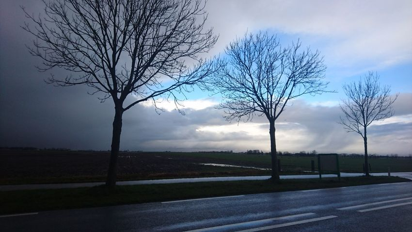 Winter weather in the Dutch green heart. Cloud - Sky Tree Sky Outdoors No People Grass Beauty In Nature Nature Day Farmland Zuid-Hollands Landschap Groene Hart Nieuwkoop Nederland Zuidholland Lost In The Landscape Rural Scene