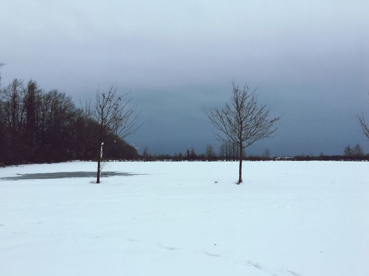 April in Mecklenburg Nature Snow Spring Cold
