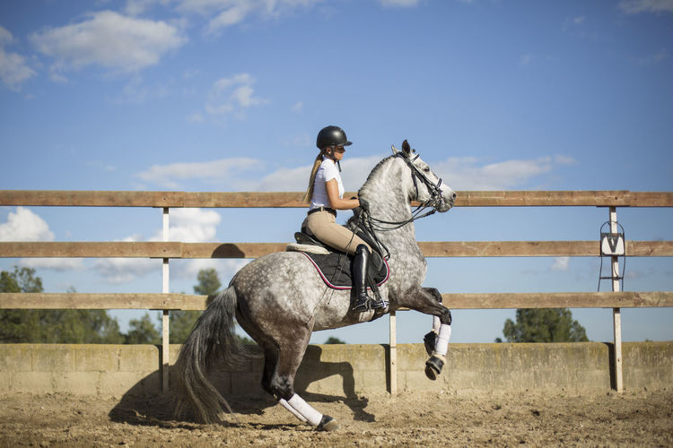 Side view of woman riding horse in ranch