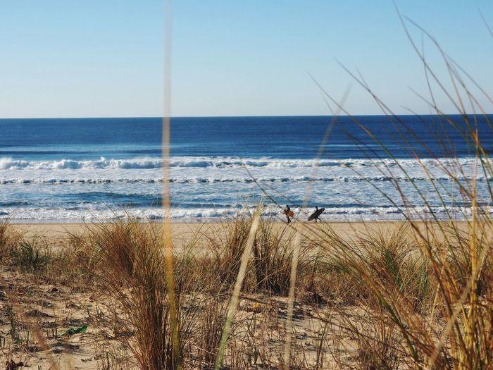 Beach Sun Blue Sky