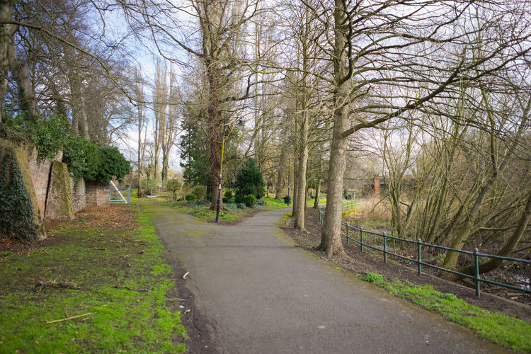 A local park in March 2017 a nice day. Borders In A Park Bushes Clouds And Sky Countryside Uk Evergreen Trees Green Grass 🌱 Outdoor Photography Outside Parks Pathways Tree Branches Water Wildlife & Nature Willows Wrought Iron Design