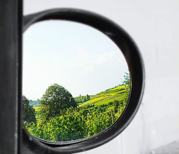 Window Glass - Material Transparent Tree Sky Close-up Reflection Nature Day Tranquility Tranquil Scene Circle Geometric Shape Green Color Scenics No People Non-urban Scene Grassy Cloud - Sky Langhe Roero Piedmont