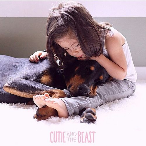 ok friends, do yourselves a huge favor and follow @cutieandthebeast ... right now! The pictures and videos of Siena and Buddha are amazing, I can only hope my future kids have a bond like this with Stanley. This account will make you smile anytime you need it!! Cutieandthebeast Bestfriends Meltsyourheart
