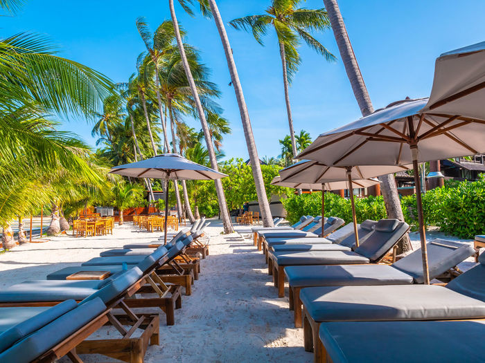 Absence Beach Beach Umbrella Canopy Chair Day Land Lounge Chair Nature No People Outdoors Palm Tree Parasol Plant Shade Sky Sunlight Sunshade Swimming Pool Tourist Resort Tree Tropical Climate Umbrella