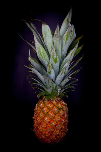 Fresh fruit, a pineapple against a dark background top view Healthy Eating Fruit Food Tropical Fruit Freshness Food And Drink Wellbeing Pineapple Studio Shot Indoors  No People Black Background Close-up Still Life Nature Orange Color Plant Part Ripe Leaf Plant Lychee Orange