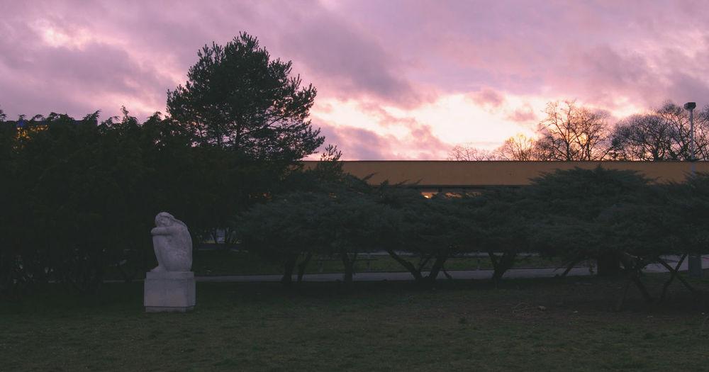 16x9 35mm Cinematic Cloud - Sky Czech Republic Dusk Film Nature No People Outdoors Prague Sky Statue Sunset Violet