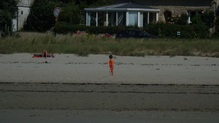 Boy On Beach Water Real People Built Structure Architecture Men Nature Lifestyles Plant People Land Day Leisure Activity Full Length Males  Tree Outdoors Lake Sealife Orange Color Penguin Frankreich France 🇫🇷 Vivelafrance Boy