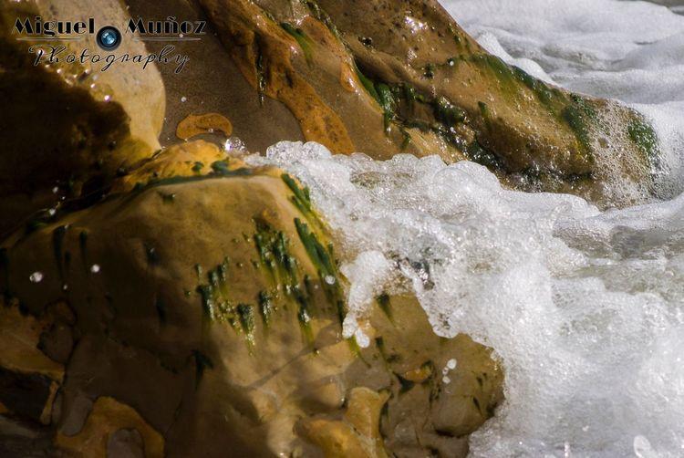 Playa de Pinedo (Valencia). Editada con camera raw. Tranquility