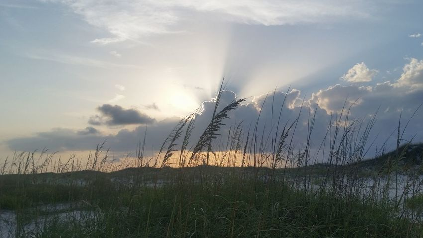 Silver Lining Nature Grass No People Outdoors Cloud - Sky Beauty In Nature Rural Scene Landscape Day Sky Scenics Dunes Beach Life Beach Photography Beach Day's End Silver Lining Silver Lining Photography in Perdido Key, Fl. Premium Premium Collection See The Light
