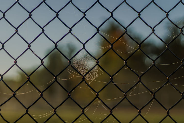 Morning Web Backgrounds Chain Link Fence Chainlink Fence Close-up Day Fence Focus On Foreground Forbidden Full Frame Metal Metallic No People Outdoors Pattern Sky Spider Web