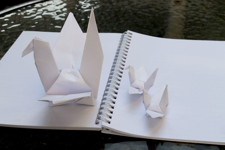 High angle view of origami papers on book