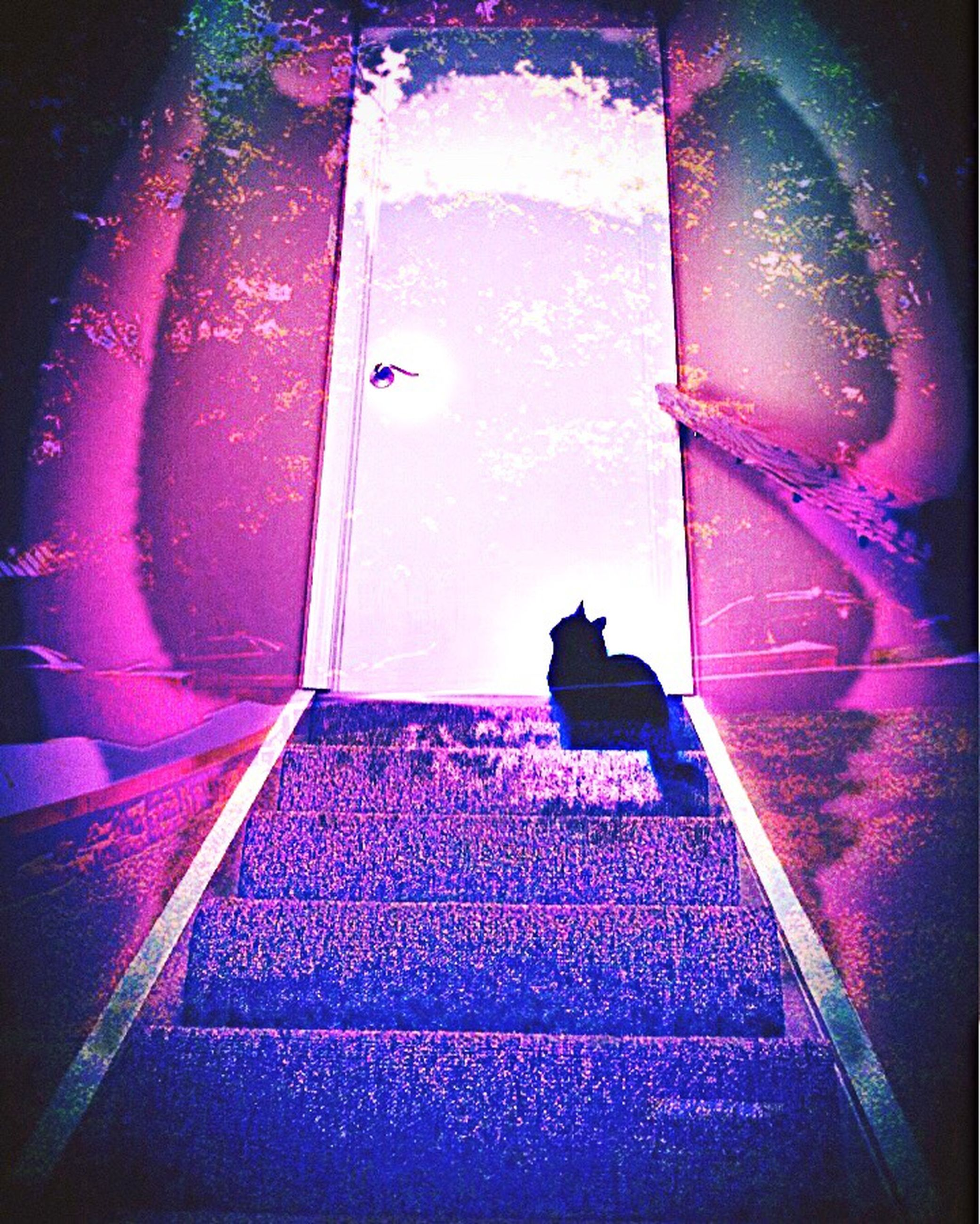 auto post production filter, purple, steps, pink color, red, outdoors, day, the way forward, geometric shape, full frame