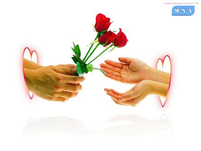 Love is not correct,, but legs,, stalk attention and respect leg..!! Balti Hicham.