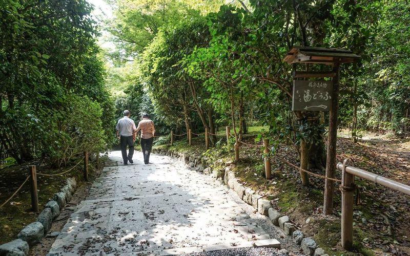 Settle down Japan Outdoors Nature Love Couple Growoldwithme Sweet Happiness Traveltogether Green The Photojournalist - 2017 EyeEm Awards EyeEm Nature Lover EyeEmNewHere BYOPaper! The Great Outdoors - 2017 EyeEm Awards EyeEm Best Shots