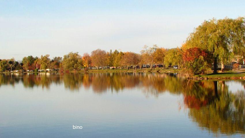 Morning Walk Autumn🍁🍁🍁 Around The Lake Beautiful Colors Lake Like Glass Reflection_collection Lake Cadillac Pure Michigan