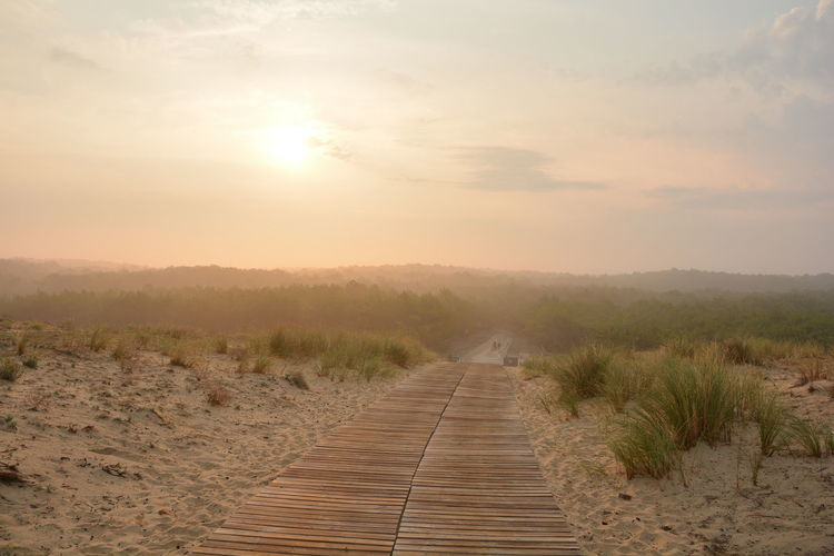 wood way on dune France Atlanic Beach Beauty In Nature Boardwalk Dune Environment Footpath Forest Land Landscape Nature No People Non-urban Scene Outdoors Plant Sand Scenics - Nature Sky Sun Sunlight Sunset The Way Forward Tranquil Scene Tranquility Wood - Material