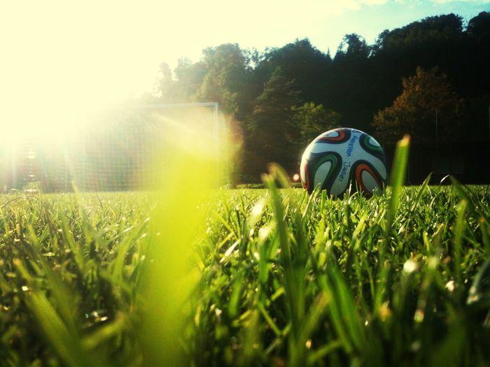 Football Football Bester Freund Lustig