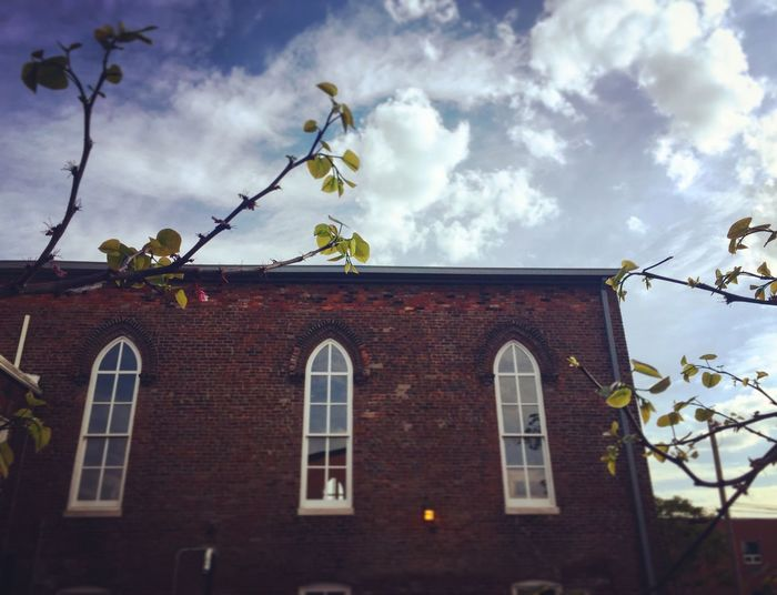 Old Old Buildings Biergarten Brick Louisville Market Trees Sunset
