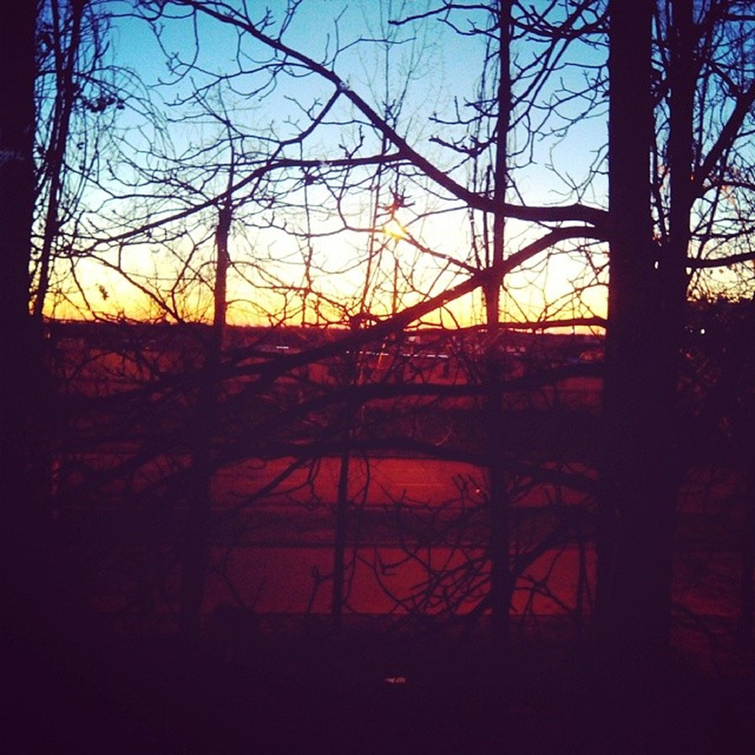 sunset, silhouette, bare tree, tree, branch, sky, tranquility, orange color, tranquil scene, nature, scenics, beauty in nature, dusk, clear sky, dark, sun, no people, sunlight, fence, railing