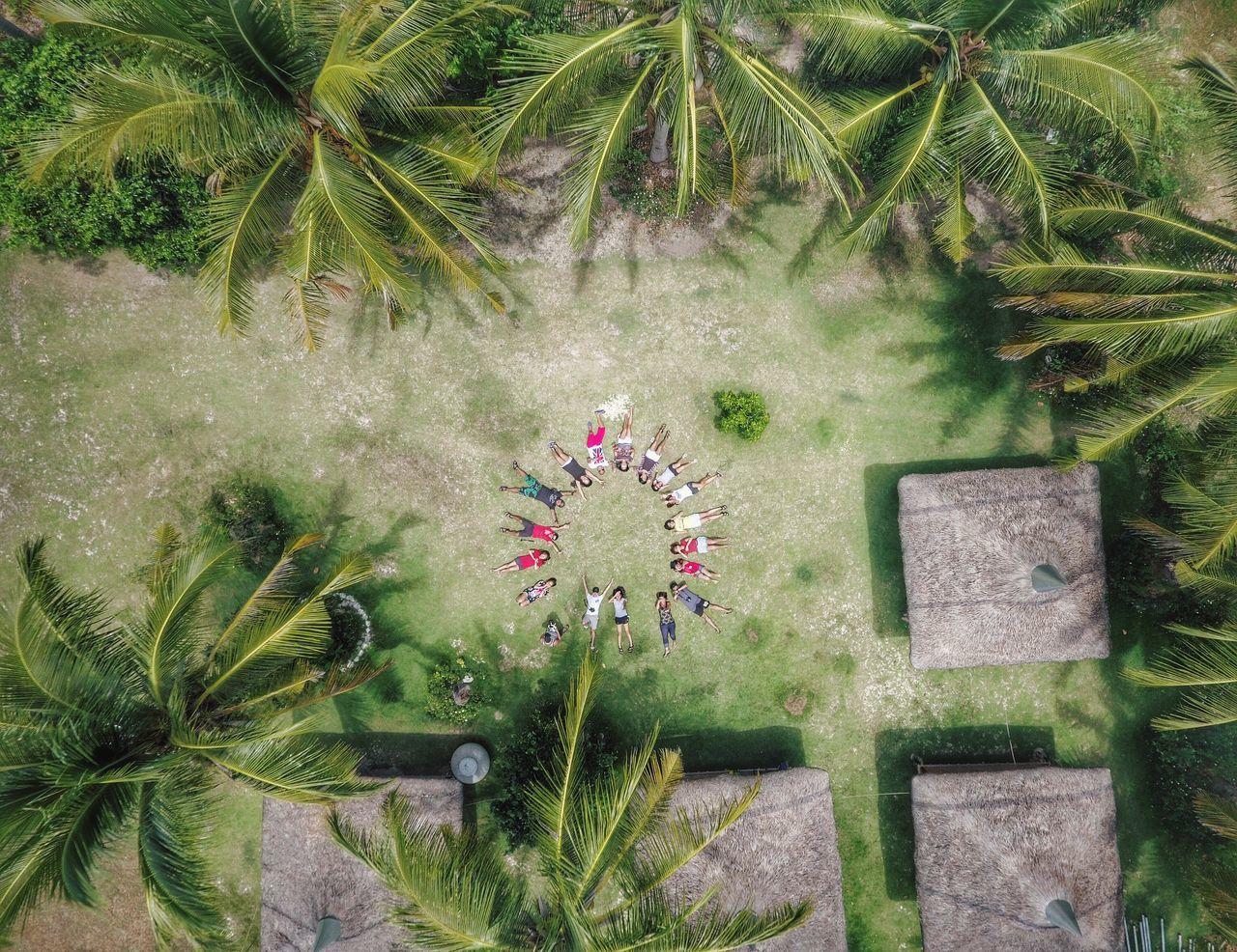 PLANTS ON LANDSCAPE