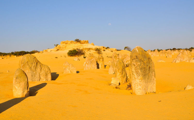 Limestone rock formations in the unique Pinnacles Desert landscape under a blue sky in Western Australia. Arid Climate Australia Beauty Cervantes Day Desert Geology Golden Landscape Limestone Nambung National Park Natural Natural Geography Nature Pinnacles Rock Rock Formation Sand Sand Dune Scenics Sky Tourism Travel Destinations Western Australia Wide Open Spaces