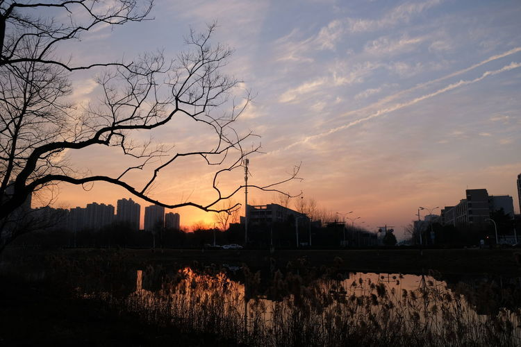 A small river near the Qian Tang River in the evening Beauty In Nature Outdoors Reflection Silhouette Sky Sunset Tree Water