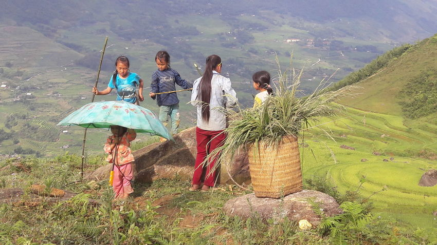 NorthVietnam Tavan  Sapa, Vietnam Rice Terraces Children Enjoying Life Meet Quiet Places Wild