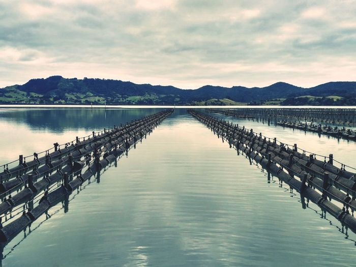 Lake Water No People New Zealand Oyster Farm