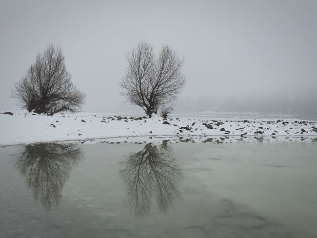 Still winter Nature Beauty In Nature Scenics Tranquil Scene Reflection Outdoors Tree No People Snow