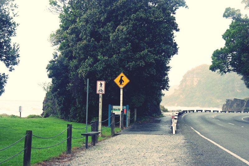 Travel Destinations Wanderlust Drivecarefully New Zealand EyeEm Nature Lover Lovethisplace Dontdrinkanddrive Penguin Road Sign