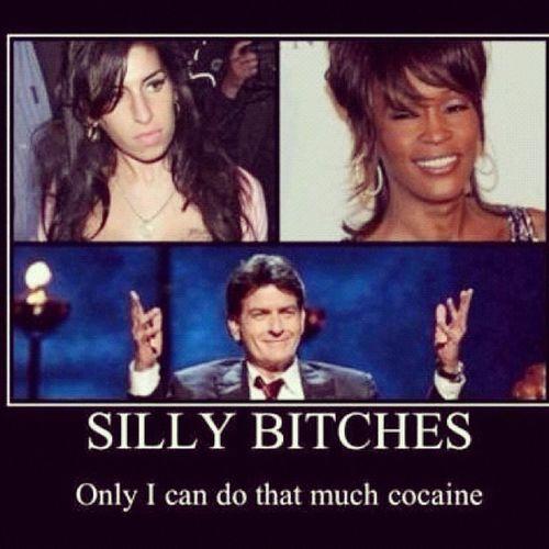 Hahahahahaha the Man ! Charliesheen Winning Tigerblood cocaineeverwhere banging7gramrocks dprox