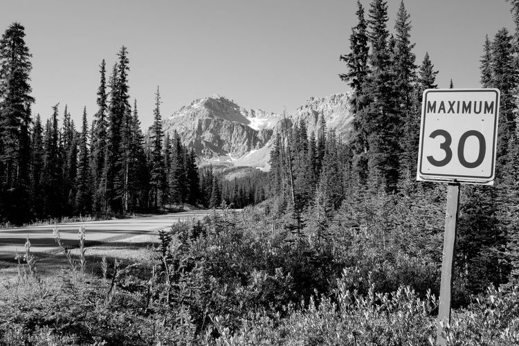 EyeEm Nature Lover Hills IceField Icefields Parkway Rocky Beauty In Nature Canada Clear Sky Communication Day Forest Glacier Glaciers Growth Icefields Landscape Mountain Nature No People Outdoors Plant Road Sign Rocky Mountains Scenics Sea Sky Speed Limit Sign Tranquil Scene Tranquility Tree