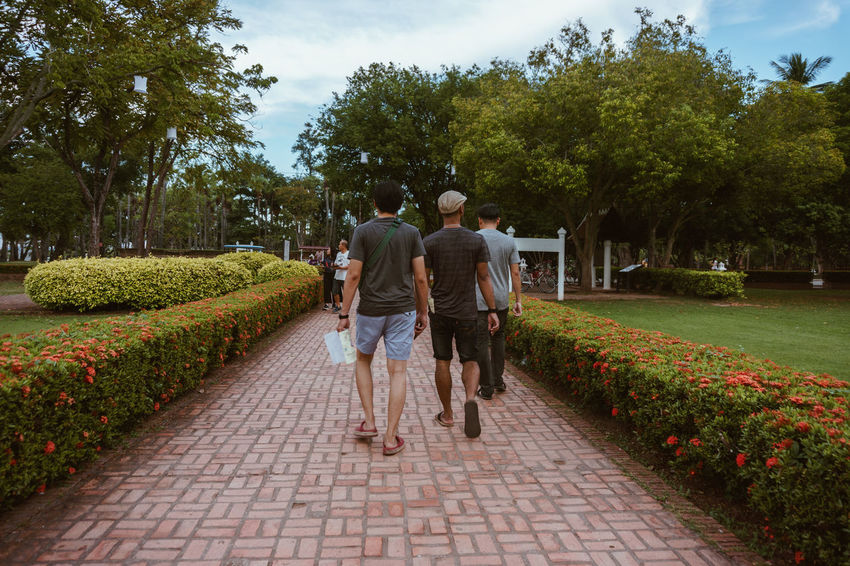 Plant Footpath Rear View Real People Tree Men Walking Full Length Nature Growth Direction Lifestyles The Way Forward Women Leisure Activity People Group Of People Adult Togetherness Outdoors Positive Emotion Couple - Relationship