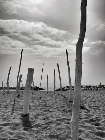 Streamzoofamily Streamzoo Blackandwhite Bw Monochrome Blackandwhite Photography EyeEm Nature Lover Nopeople Alone Nature Tranquility Peace One Day Water Wooden Post Sand Calm Tranquil Scene Non-urban Scene Coast Idyllic