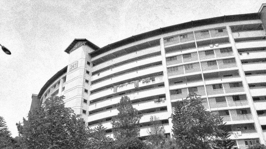 Flats Residences Public Housing Curved  Design Architecture Building And Trees Nature EyeEm Nature Lover Urban Nature Eyeemphotography Blackandwhite Black And White Collection  Blackandwhite Photography EyeEm BlackandWhite Blacknwhiteworld