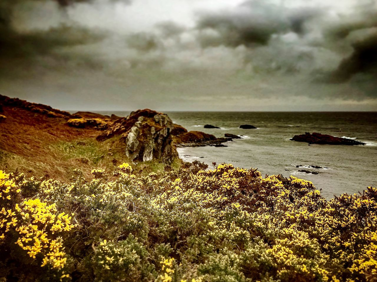 nature, tranquility, tranquil scene, beauty in nature, rock - object, scenics, water, sky, cloud - sky, no people, outdoors, day, sea, landscape