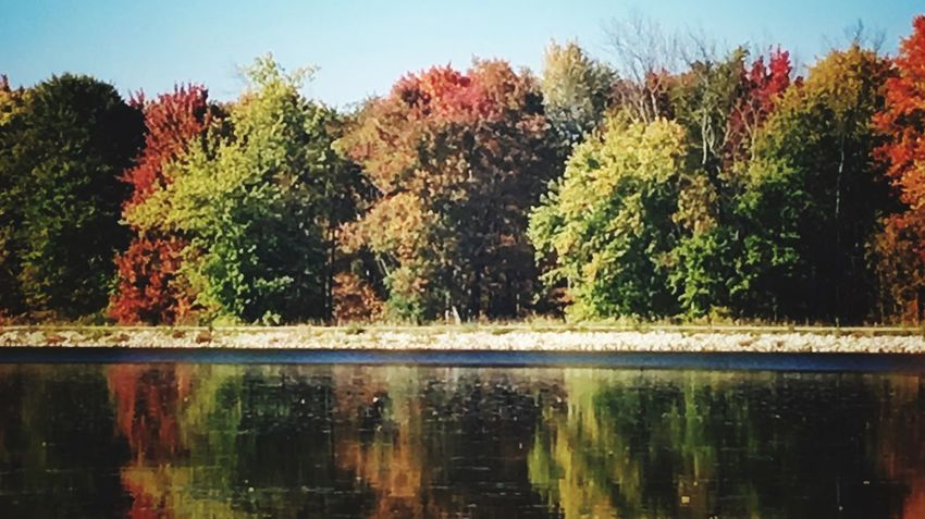 Reflection Tree Water Nature Growth Beauty In Nature Sunlight Outdoors Clear Sky Day No People Waterfront Sky Scenics Autumn Colors Walter C Best Tranquility