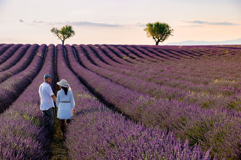 Rear view of couple standing on flowering field against sky