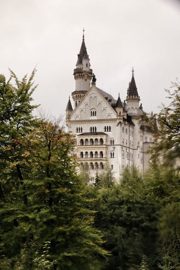 GERMANY🇩🇪DEUTSCHERLAND@ Castle Bavaria Bayern Germany Ludwig II Neuschwanstein Disney Cinderella Woods Architecture German Castle