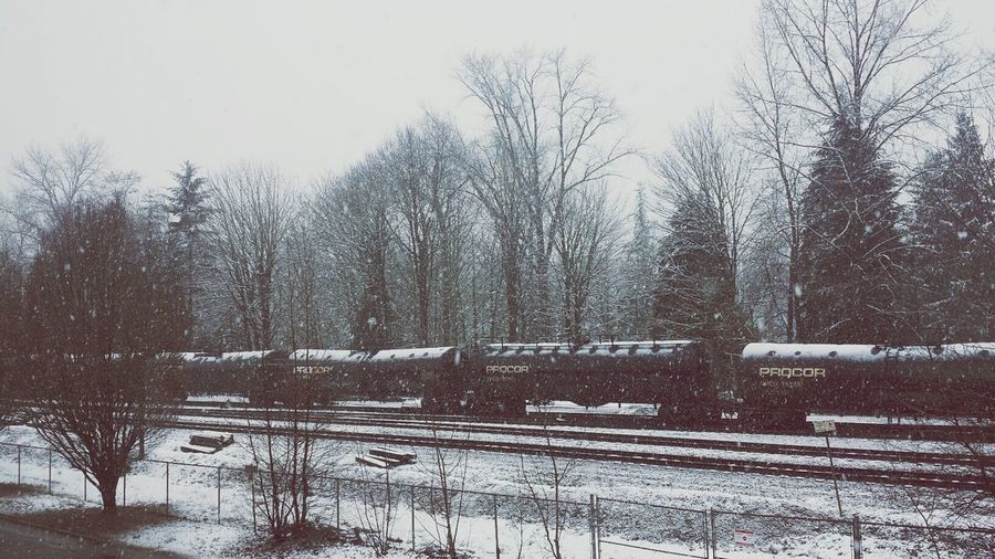 Lion's Way Vancouver Winter Train snow