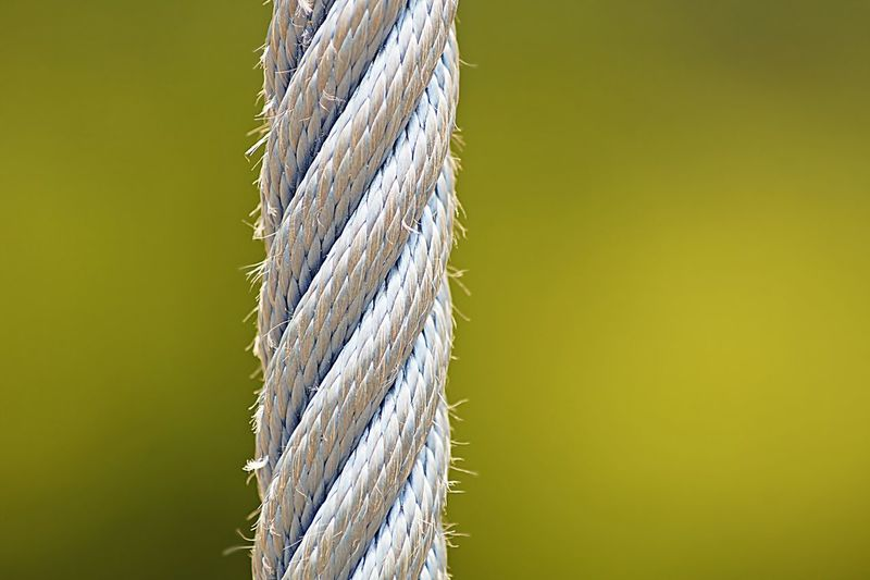 rope Close-up Cord Green Macro Rope
