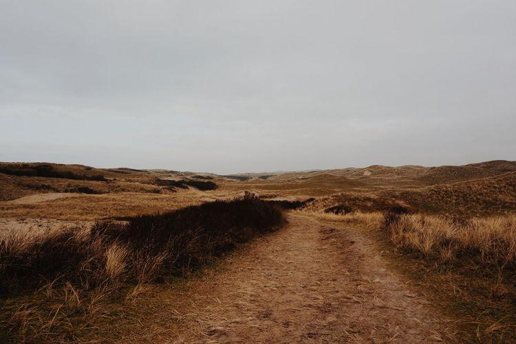 Landscape Sand